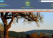 SRFMR Website